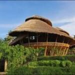 Бамбук – новая архитектурная  концепция